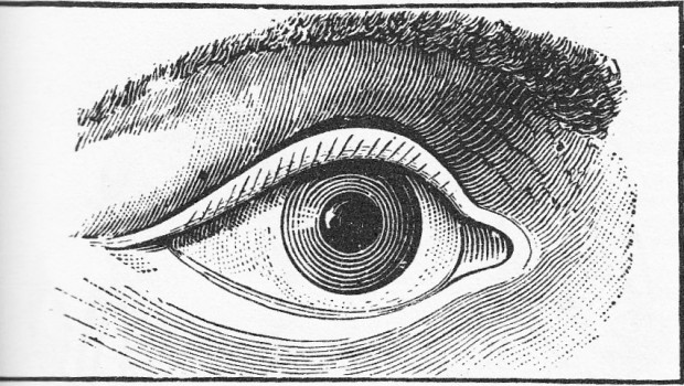 A Private Eye Into the Lives of Politicians