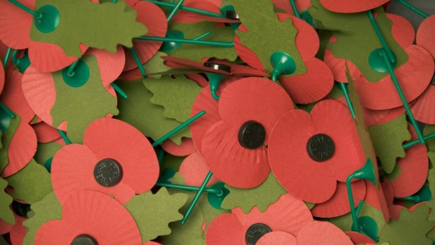 When are you going to buy a poppy? Oh, I'm not…