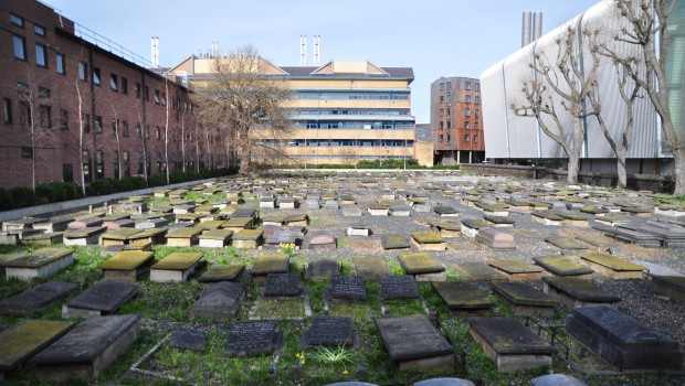 Campus History: The Novo Cemetery at QMUL